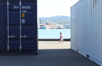 Wellington Harbour and the accidental audience